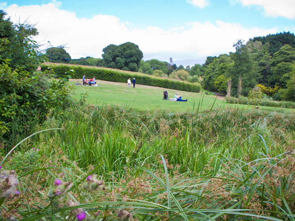3 Gorgeous Gardens To Visit During Your Stay In Exeter